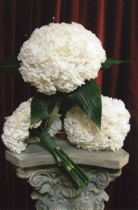 25  best ideas about White Carnation Bouquet on Pinterest