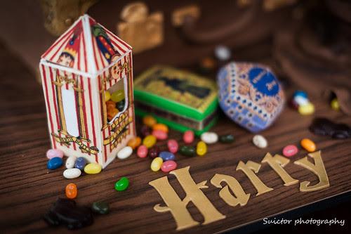 HarryPotterCake-12