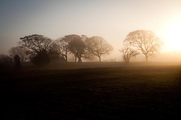 Edgartown News, Foggy Edgartown, Morning Mist
