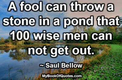 A fool can throw a stone