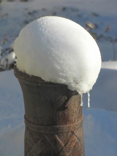 Snowy pompom