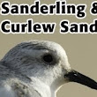 BTO Bird ID guides  - YouTube