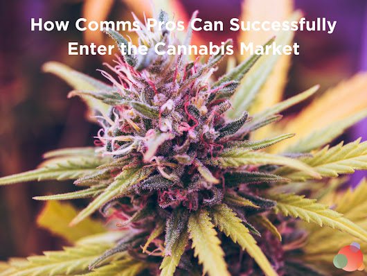 How Comms Pros Can Successfully Enter the Cannabis Market