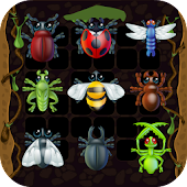 Insect Matching Game