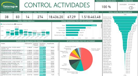 Tecnova participa en la ejecución de una herramienta de datos en olivar