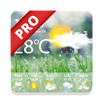 Weather Pro - Weather Real-time Forecast 1.1 (Paid)