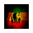 Rasta Lion Theme