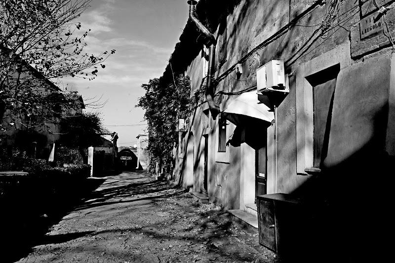"""""""Via A.Regolo"""" di cugar79"""