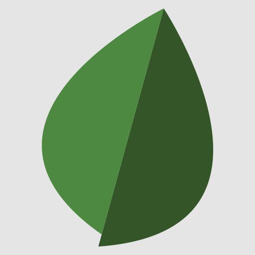 Fortifi Bank (app)