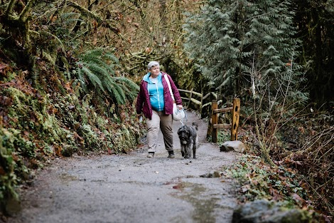 A woman walks with a large grey dog along a lush forest path to unplug from technology.