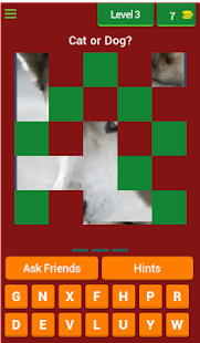 Guess the Animal: Cat or Dog? - náhled