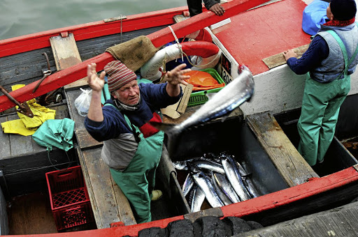 Docking: A fisherman off-loads his catch to eager buyers in Cape Town's Kalk Bay harbour. Rights allocations have recently been awarded in squid, inshore hake, West Coast lobster and horse mackerel. But Viking Fishing challenged the new quota awards for inshore hake. Picture: REUTERS