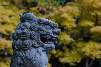 Photo: A shisa (guardian dog) at a local shrine with Autumn colors in the background