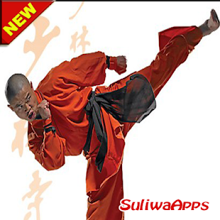 Best Kung Fu Learning Technique - náhled