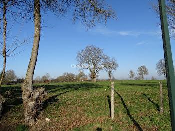 terrain à Nozieres (18)