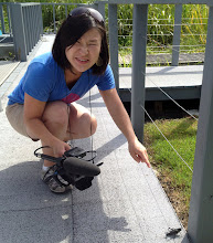 Photo: Jules makes friends with the local wildlife http://ow.ly/caYpY