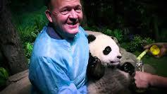 Pandaerne kommer (2:3)