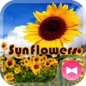 Summer Wallpaper Sunflowers