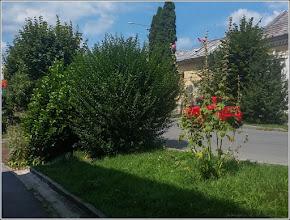 Photo: Turda - Str. Mihai Eminescu - 2019.08.17