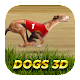Dogs3D Races Betting (game)