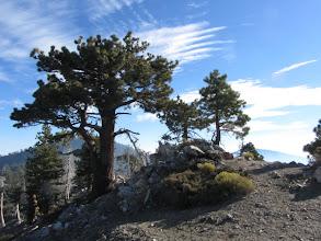 Photo: Summit of Mount Hawkins, tenth tallest peak in the San Gabriels