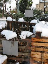Photo: קומפוסטרים בשלג