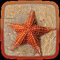 Starfish Live Wallpaper icon