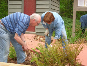 Photo: Jim and Christine Check Out a Fern in the Rock Garden