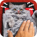 Rub a cat. Game icon