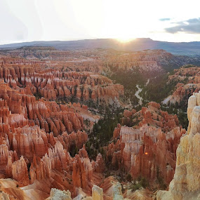 Bryce Canyon by Megan Whitehead - Landscapes Mountains & Hills