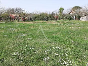 terrain à Samatan (32)