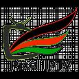 Pixel IPTV icon