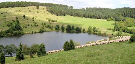 Photo: Speicher Grimmelsbach - Rhönlandschaft pur