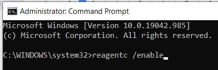 "Enter ""reagentc /enable"""
