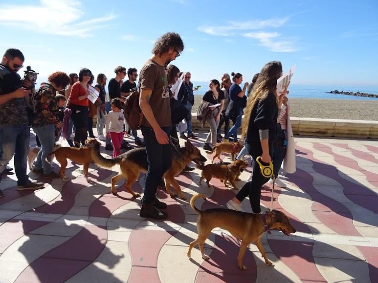 Participantes en la concentración en el Paseo Marítimo.