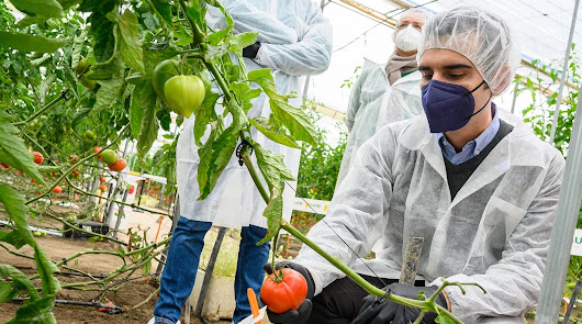 Almería apoya al sector agroalimentario de la provincia en Fruit Attraction