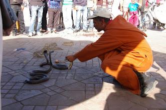 Photo: Charmeur de Serpents