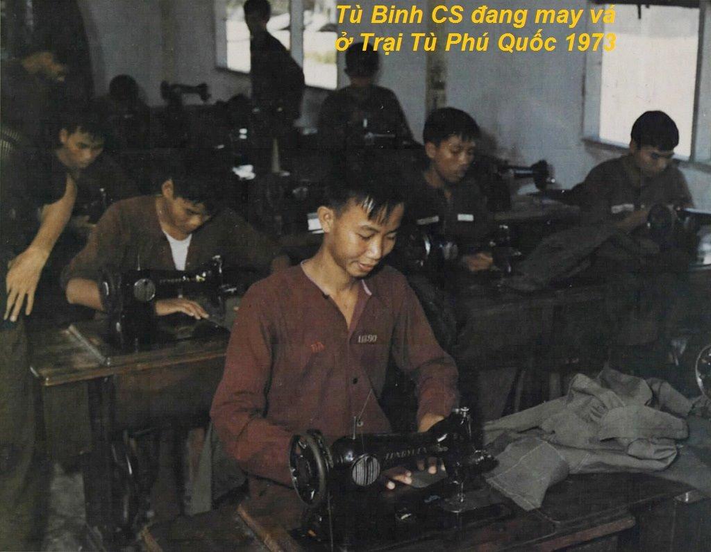 Tu binh CS 13.jpg