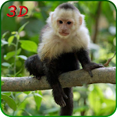 Monkey Simulator 3D