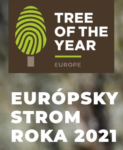 Európsky strom roka 2021