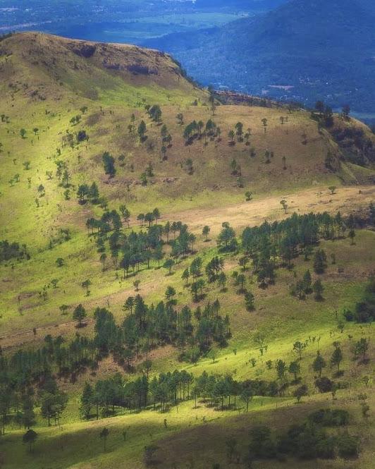 Yahangala