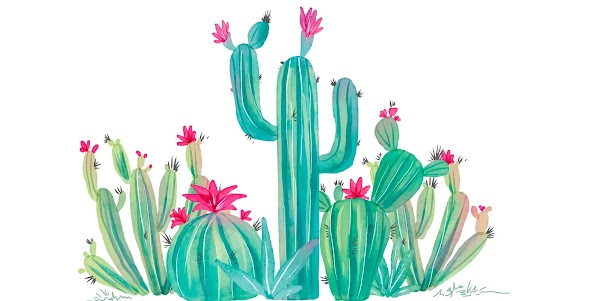 Benefits Of Cactus Oil For Your Skin, Beauty, And Hair