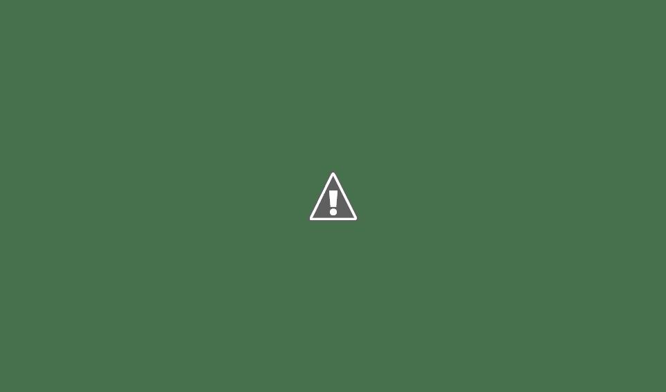 INTENDENTE BOTTASSO: Recibimos la visita de nuestras soberanas
