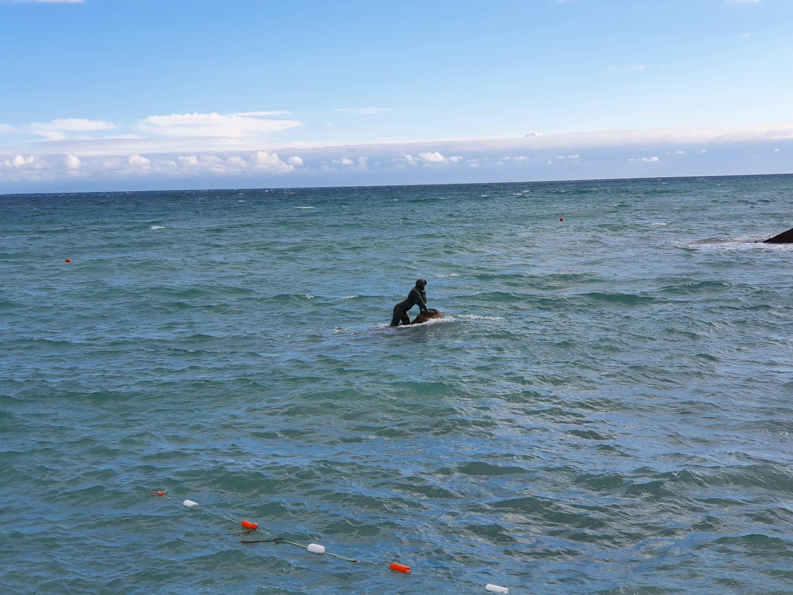 Мисхор, 11 дней в июне 2021, или чем заняться, когда море 12 градусов
