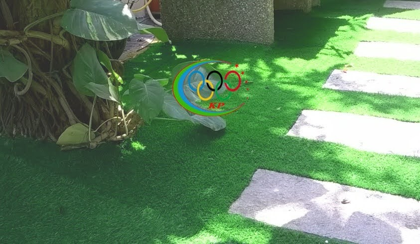 Cỏ nhân tạo sân vườn của  thảm cỏ Phú An Phát chuyên thiết kế nội ngoại thất
