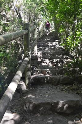 schodki naMirador…