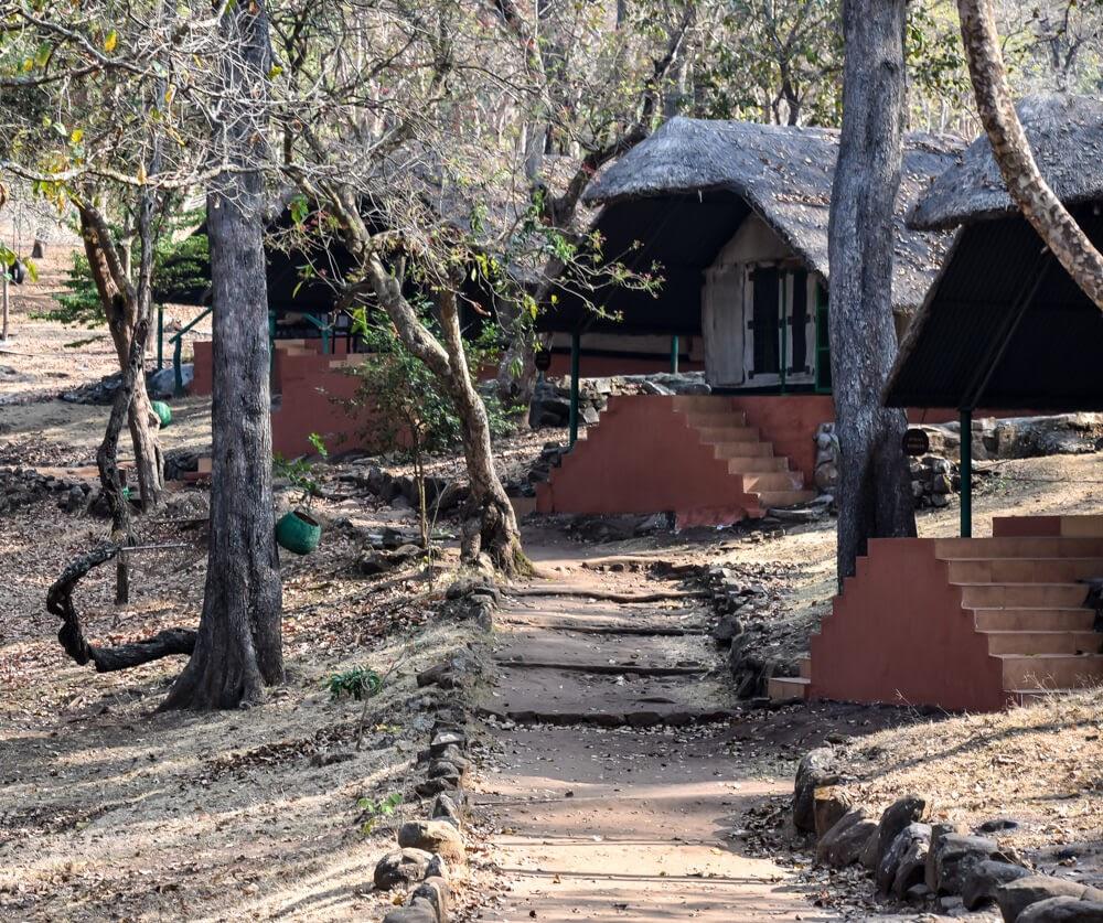 br hills stay Kyathdevaraya Gudi Wilderness Camp.jpg