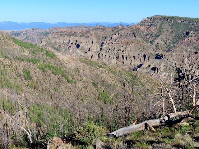 Rough terrain below