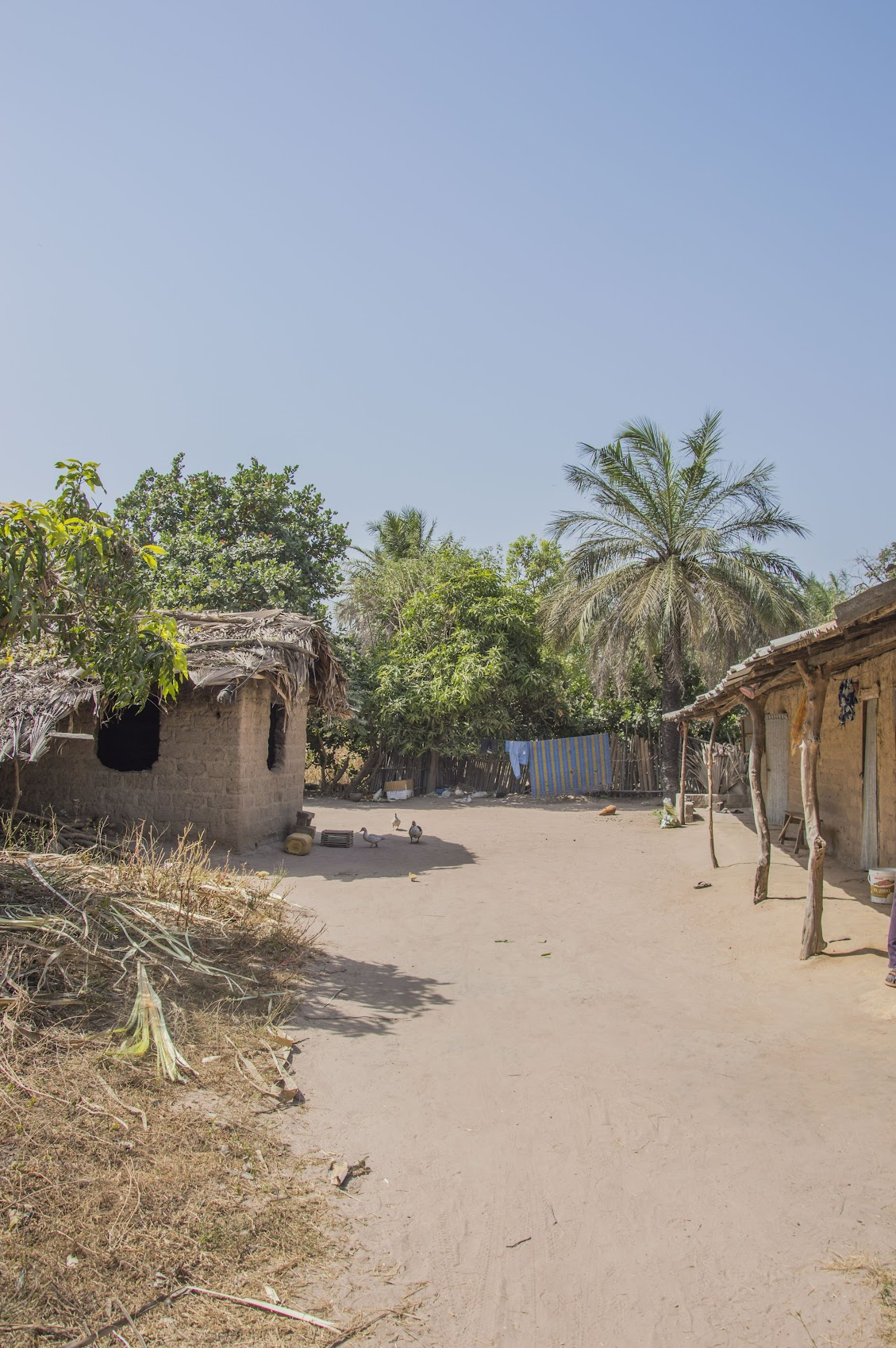winterzon-gambia