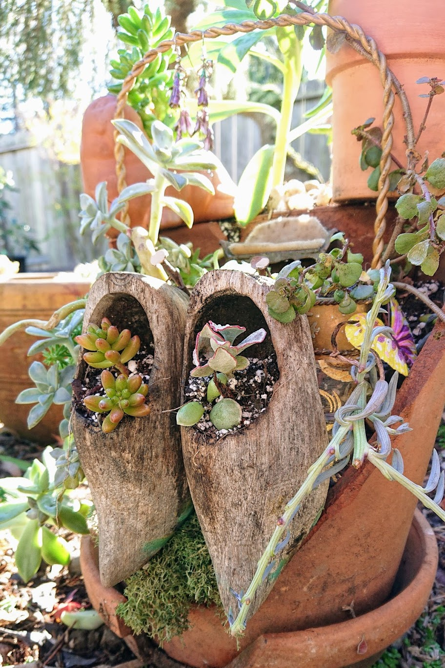 Main view of the fairy garden with two hanging mini wooden clogs. | FAFAFOOM STUDIO